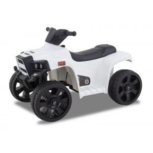 Kijana panda mini-quad
