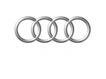 Auto elettrica per bambini Audi